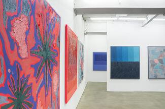 Russell Tyler: Strange Variants, installation view