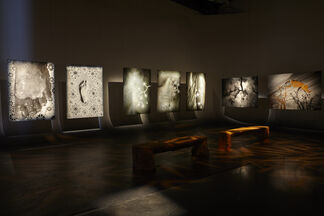 NOMAD TWO WORLDS (in collaboration with Pier 59 Studios, Los Angeles, USA), installation view