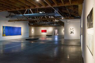 DANIEL BRICE, installation view
