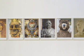The Bass Projects - Rachel Harrison: Voyage of the Beagle, Two, installation view