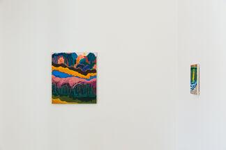 Shara Hughes: Bold Suns, installation view