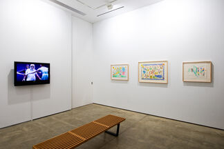 """Excuse me!?!...I'm looking for the """"Fountain of Youth"""", installation view"""