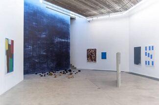 Bird Space Deep Blue, installation view