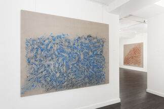 Vicky Colombet: Earth, installation view