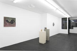 Kleenex Rose, installation view