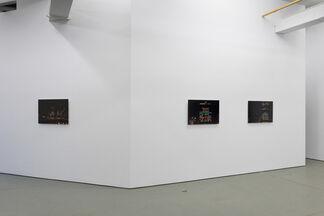 Aude Moreau, La ligne bleue, installation view