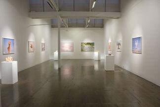Phanta Firma, installation view