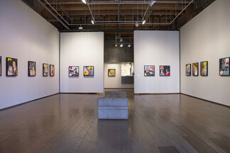 Great American Muse, installation view
