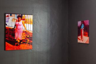 Mashudu Nevhutalu   Matriarchs, installation view