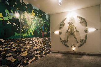 Secret Garden, installation view