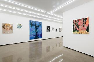 The Fantasy of Representation, installation view