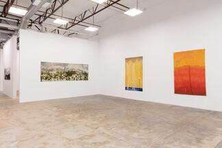 Gary Goldberg: Oaxaca Between the Lines, installation view