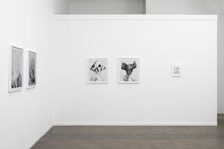 Arden Surdam: Hold Your Breath, installation view