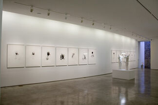 The Mirror (exercises to be another), installation view