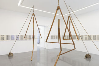 Bharti Kher - The Laws of Reversed Effort, installation view