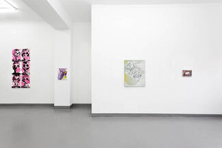 A Supposedly Fun Think I'll Never Do Again, installation view