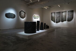 Mapping Folds of the Body, installation view