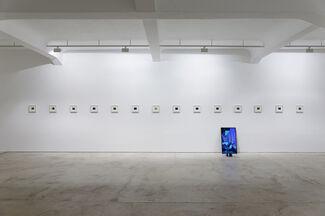 Peter Miller | Photuris, installation view