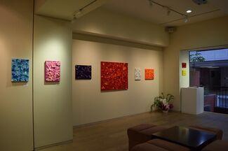 Emiko Aoki Exhibition, installation view
