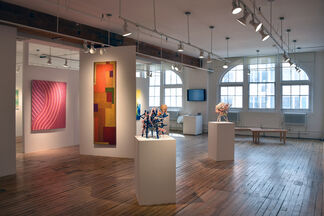 Uncontrollable, installation view