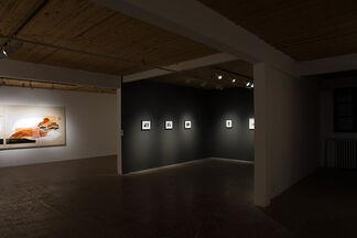 Trevor Kiernander, installation view