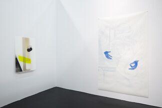 Linn Lühn at Art Cologne 2015, installation view