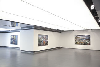 Distant Remains, installation view