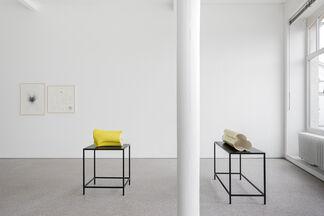 Joe Zorrilla, installation view