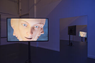 The Valley, installation view