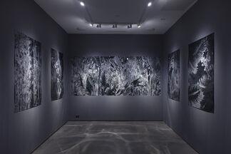 Karine Laval, installation view