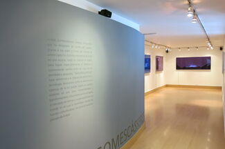 Artificial Nature, Recent Works by Anibal Gomescasseres, installation view