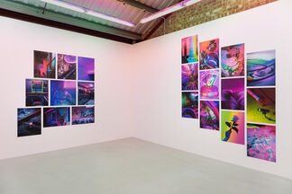 Signe Pierce 'Faux Realities', installation view