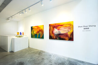 Shan Shan Sheng Solo Exhibition, installation view