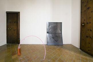 Alex Da Corte - Gentle Plain, installation view