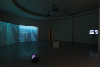 I can call this progress to halt, installation view