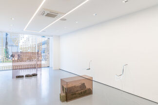 Four floating patches, secondary shoots, installation view