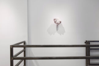 Slow Hunch, installation view