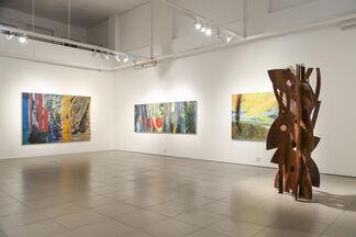 Carlos Vergara - Natureza Inventada, installation view
