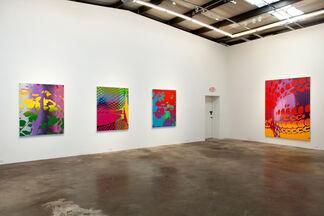 Zeke Williams: Heat Check, installation view