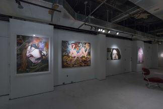 Pish Posh, installation view