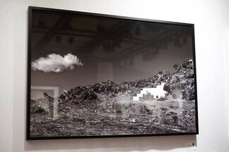 Fifty Dots at fotofever Paris 2015, installation view