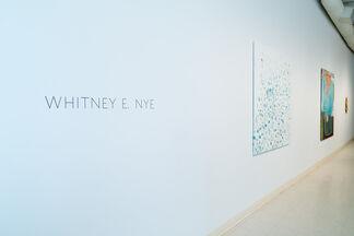 Whitney Nye: Midst, installation view