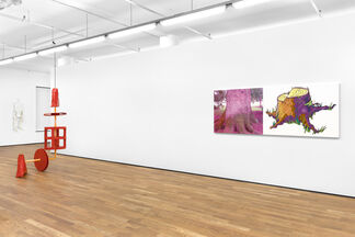 Mature Themes, installation view