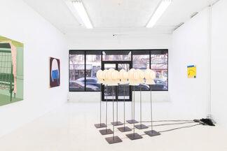 """Useless Flowers"" | Caitlin MacBride & Sam Stewart, installation view"