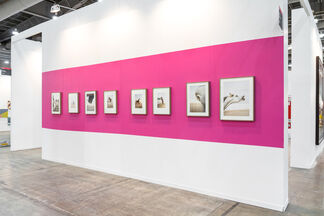Mai 36 Galerie at Zona MACO 2015, installation view