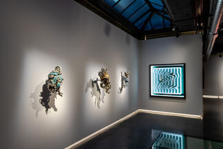 Shape Shifter, installation view