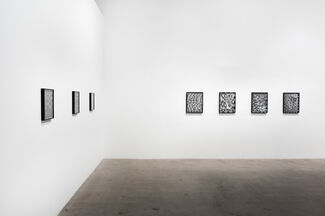 Gray Area, installation view