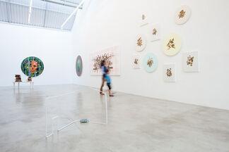 James Kudo | Topofilia, installation view