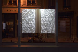 Affinités / Diversités, Anarchive, installation view