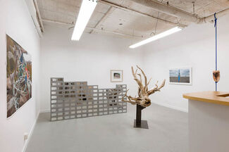 Lat and Long, installation view